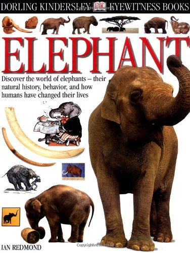 Beautiful Book about Elephants