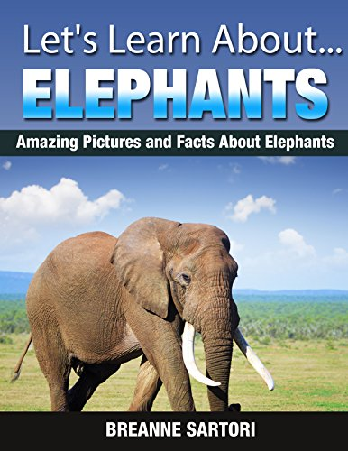 Interesting and Cool Facts about Elephants